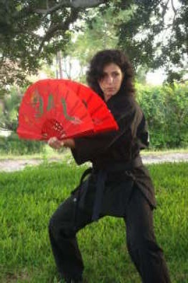 Sensei Jerri - Fighting fans